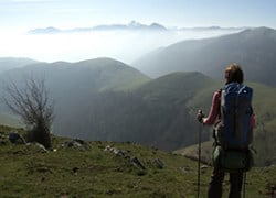 Facing The Camino de Santiago in the film