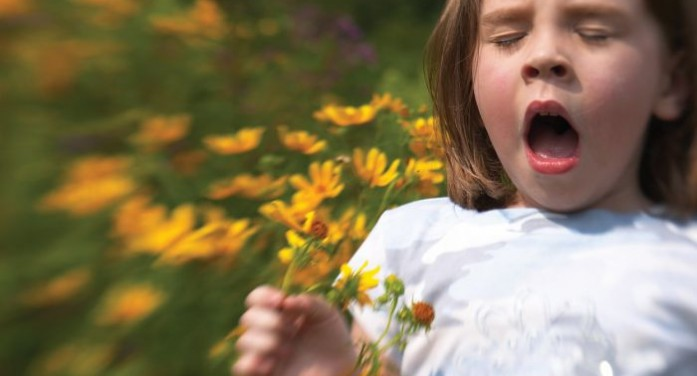 Tips for beating hay fever