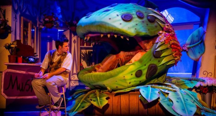 Review: Little Shop of Horrors proves to be a growing success
